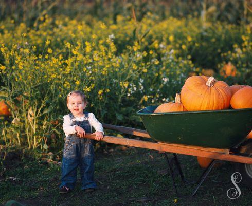 Portraits by Shanti Duprez / Half Moon Bay pumpkin patch / Lemos Farm / Farmer John's pumpkins / Bob's vegetable stand